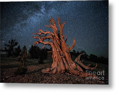 Countless Starry Nights Metal Print by Melany Sarafis