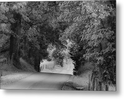 Country Drive Metal Print by Andrew Soundarajan