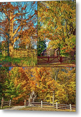 Country Fences Collage Metal Print