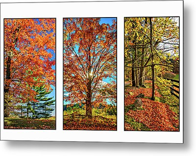 Country Fences Triptych Metal Print by Steve Harrington