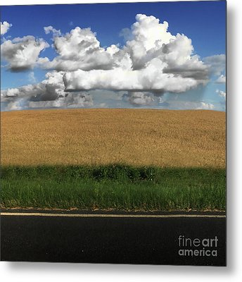 Metal Print featuring the photograph Country Field by Brian Jones