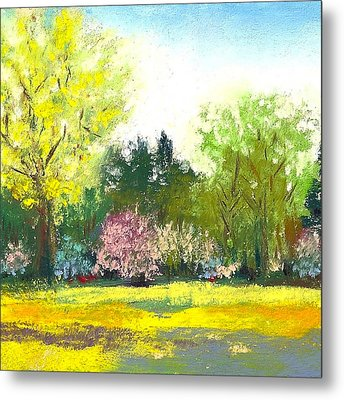 Country Garden Metal Print by David Patterson