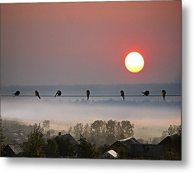 Metal Print featuring the photograph Country Landscape by Vladimir Kholostykh