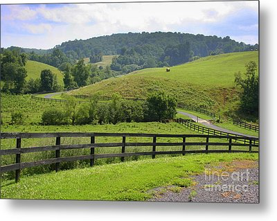Country Lane Metal Print by Julie Lueders