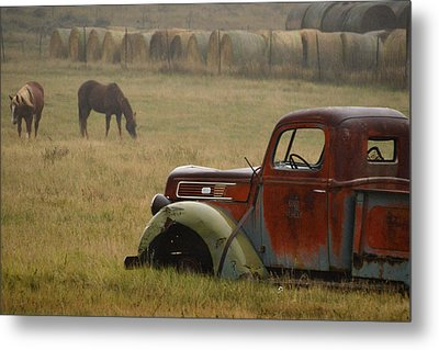 Metal Print featuring the photograph Country Life.. by Al Swasey