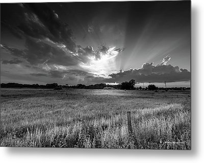 Country Life B/w Metal Print by Marvin Spates