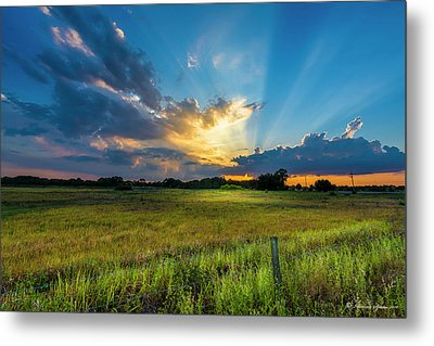 Country Life Metal Print by Marvin Spates