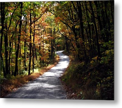 Country Road Metal Print by David Dehner