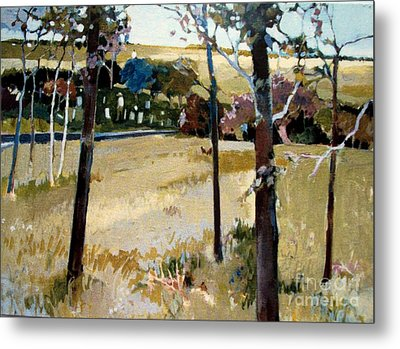 Metal Print featuring the painting Country Road by Diane Ursin