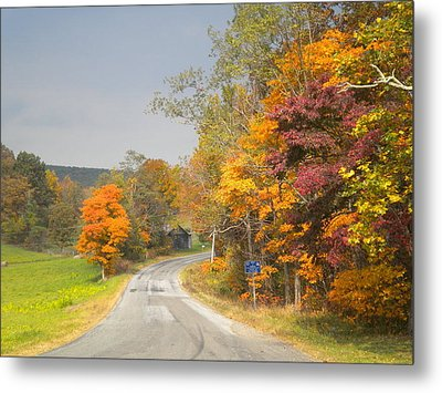 Metal Print featuring the photograph Country Road In The Fall by Diannah Lynch