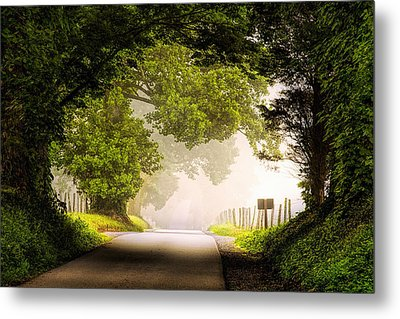 Country Road In The Smokies Metal Print by Andrew Soundarajan