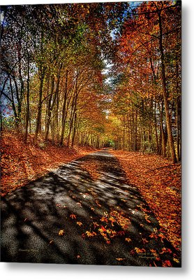 Country Road Metal Print by Mark Allen