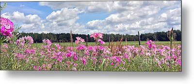 Country Roads Metal Print by LeeAnn Kendall