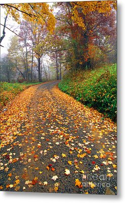 Country Roads Take Me Home Metal Print by Thomas R Fletcher