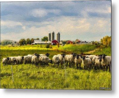 Country Sheep Metal Print