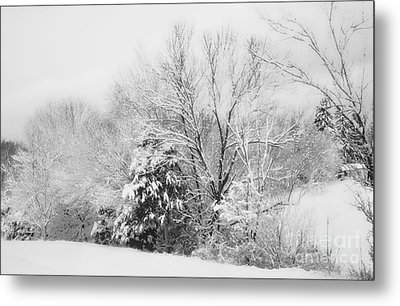Country Winter Metal Print by Kathy Jennings