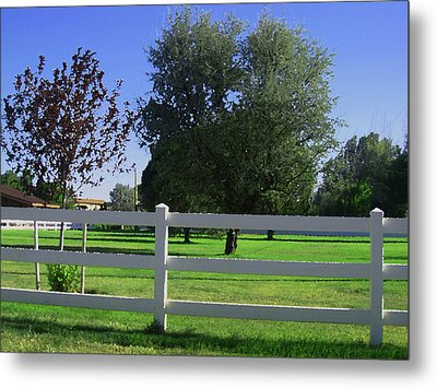 Metal Print featuring the photograph Country Yard by Tammy Sutherland