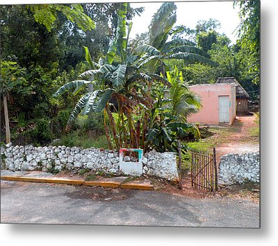 Countryside Along The Yucatan Peninsula Metal Print