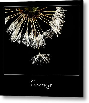 Metal Print featuring the photograph Courage 3 by Mary Jo Allen