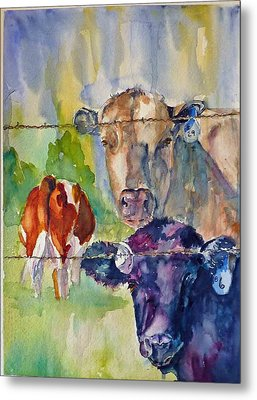 Metal Print featuring the painting Cow Bingo by P Maure Bausch