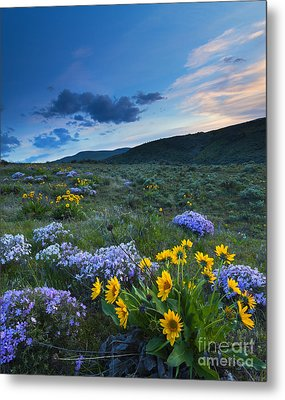 Cowiche Spring Sunset Metal Print