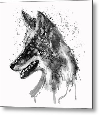 Coyote Head Black And White Metal Print