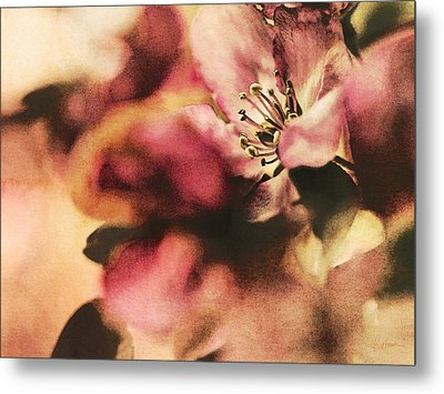 Crab Apple Blossoms IIi Metal Print