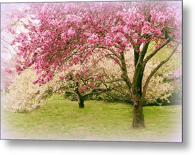 Metal Print featuring the photograph Crabapple Confection by Jessica Jenney
