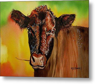 Cracker Moo Metal Print by Maria Barry