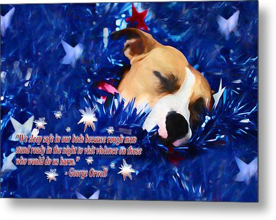 Metal Print featuring the photograph Cradled By A Blanket Of Stars And Stripes - Quote by Shelley Neff