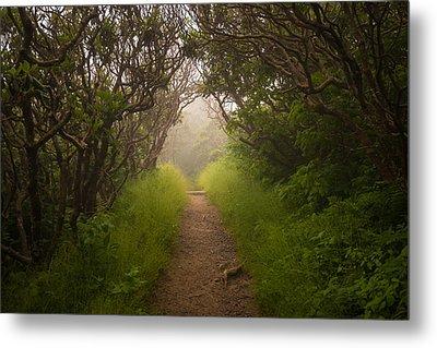 Craggy Pinnacle Trail Blue Ridge Parkway Metal Print by Rick Dunnuck