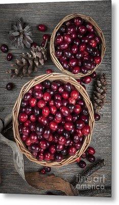 Cranberries In Baskets Metal Print by Elena Elisseeva