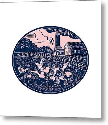 Cranberry Fruit Farm Oval Woodcut Metal Print