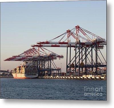 Cranes 2 Metal Print