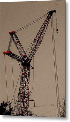Crane's Up Metal Print