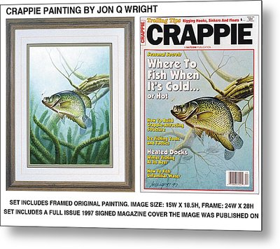 Crappie And Minnows Metal Print by Jon Q Wright