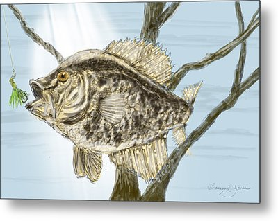 Crappie Time - 2 Metal Print by Barry Jones