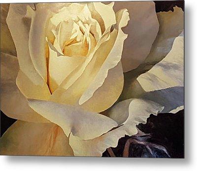 Creamy Rose Metal Print