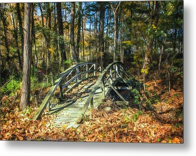 Creek Crossing Metal Print by Tom Mc Nemar