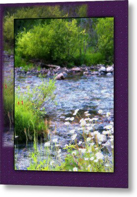 Metal Print featuring the photograph Creek Daisys by Susan Kinney
