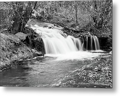 Creek Merge Waterfall In Black And White Metal Print