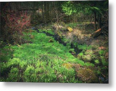 Creek - Spring At Retzer Nature Center Metal Print by Jennifer Rondinelli Reilly - Fine Art Photography