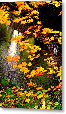 Metal Print featuring the photograph Creekside Colors by Lynn Bawden
