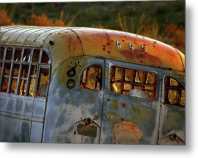 Metal Print featuring the photograph Creepers by Trish Mistric
