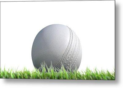Cricket Ball Resting On Grass Metal Print