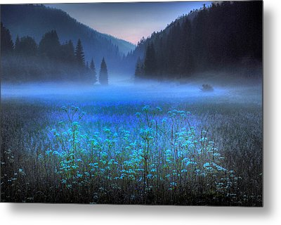 Croatian Valley Metal Print by Don Wolf