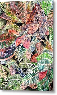 Croton Tropical Art Print Metal Print by Derek Mccrea