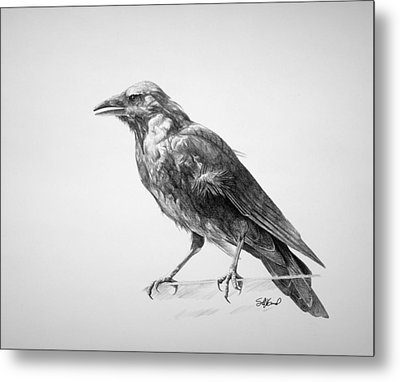 Crow Drawing Metal Print