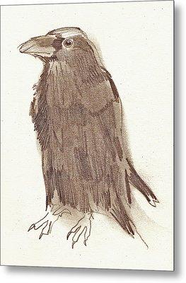 Crow Metal Print by Sarah Lane