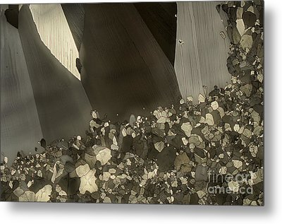 Metal Print featuring the photograph Crowd by Olimpia - Hinamatsuri Barbu